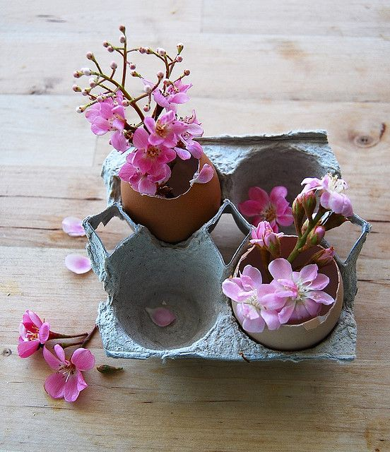 cofraje oua flori ikebana
