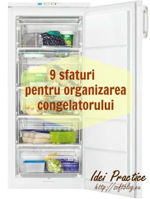 organizarea congelatorului