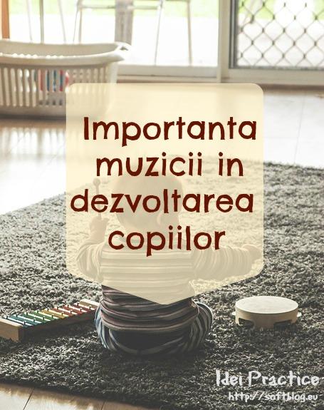 importanta muzicii