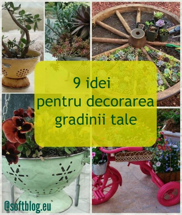 idei pentru decorarea gradinii
