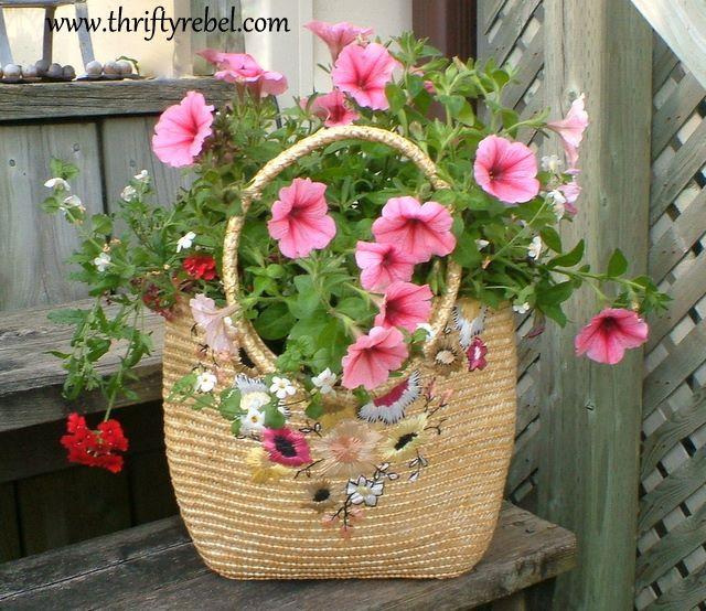sacosa flori