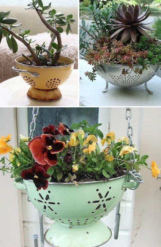 suport flori strecuratoare