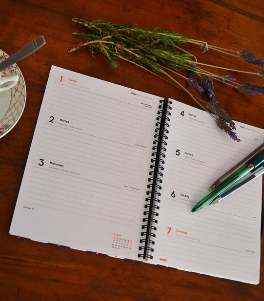 planuri la început de an