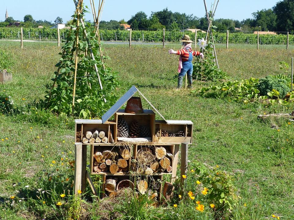 ce este permacultura