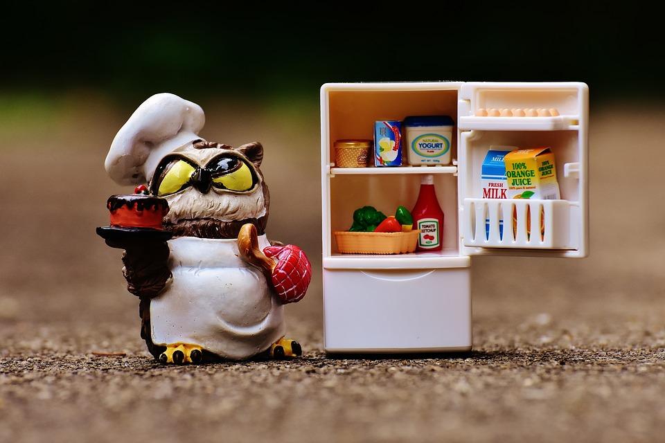 alegi frigiderul