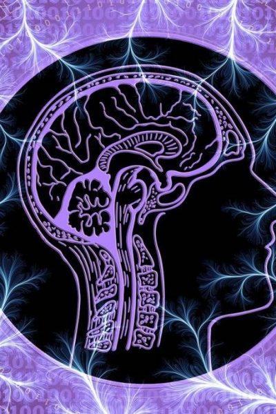 nervul vag
