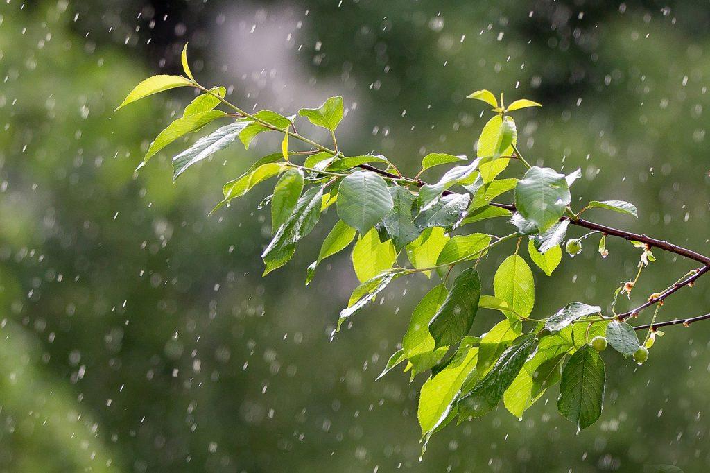 de unde vin precipitațiile